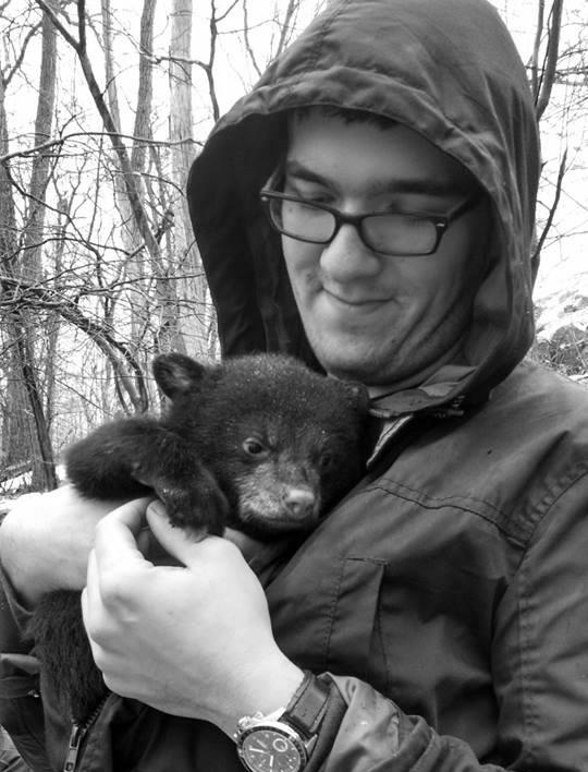 New England Bears Inc Baby Bears For Sale Purchase