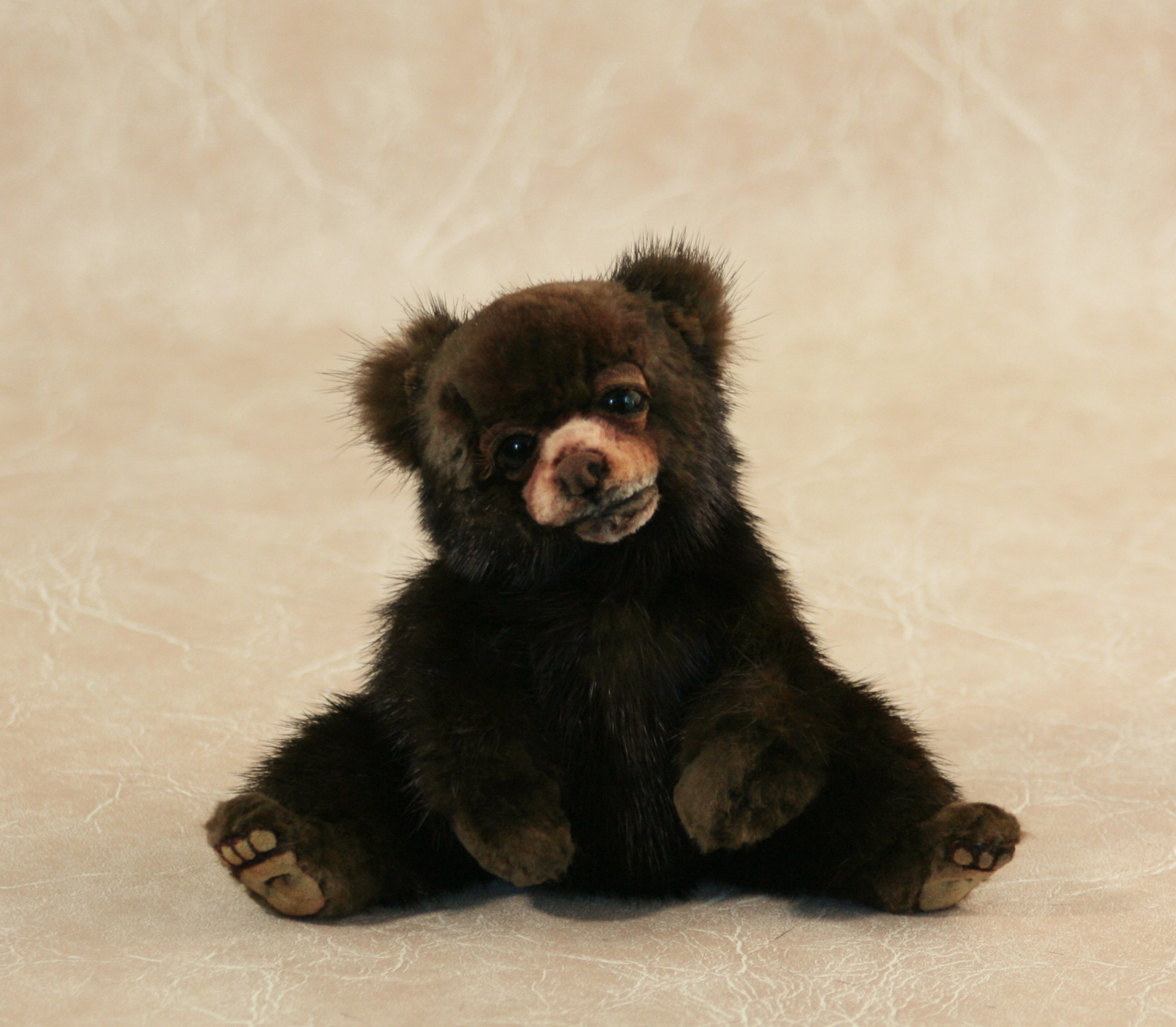 Baby Bear Cubs   www.pixshark.com - Images Galleries With ...
